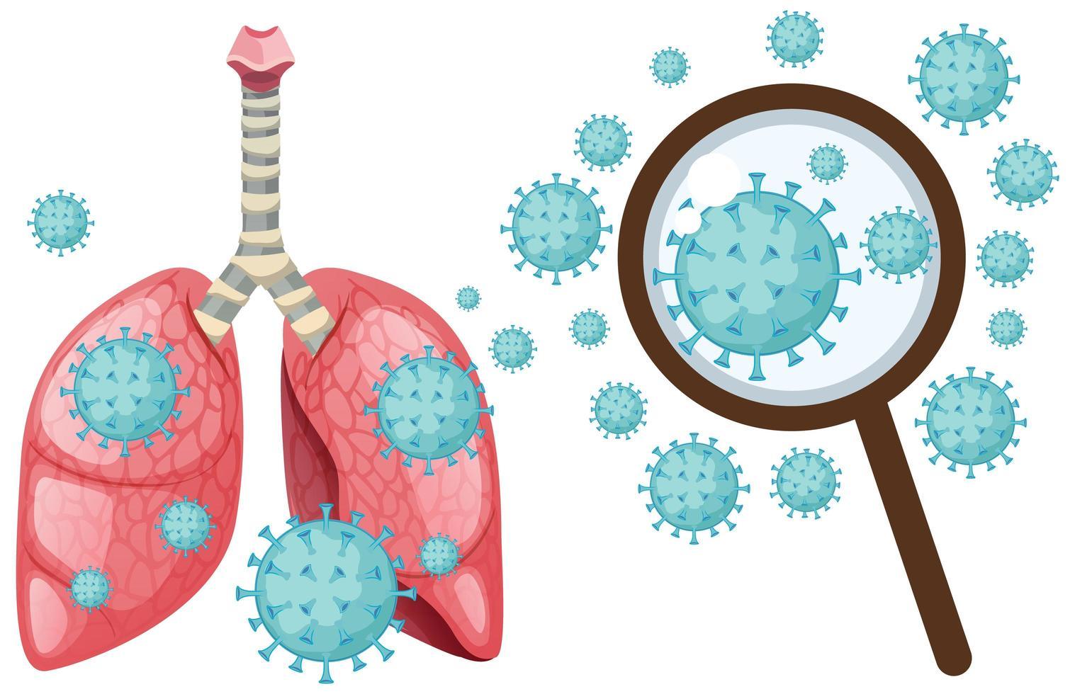 célula de coronavirus en pulmones humanos vector