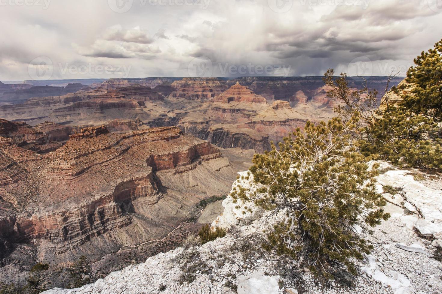 parque nacional del gran cañón, arizona foto