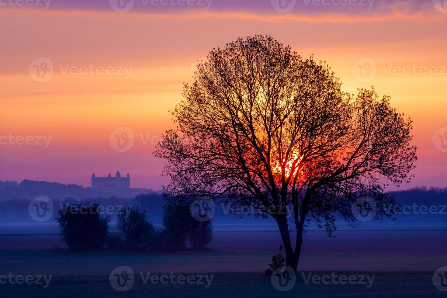 Castillo de Bratislava foto