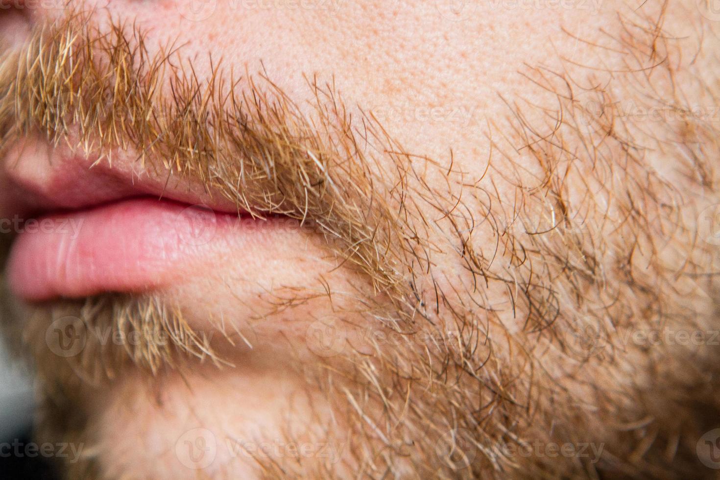 Beard and Facial Hair photo