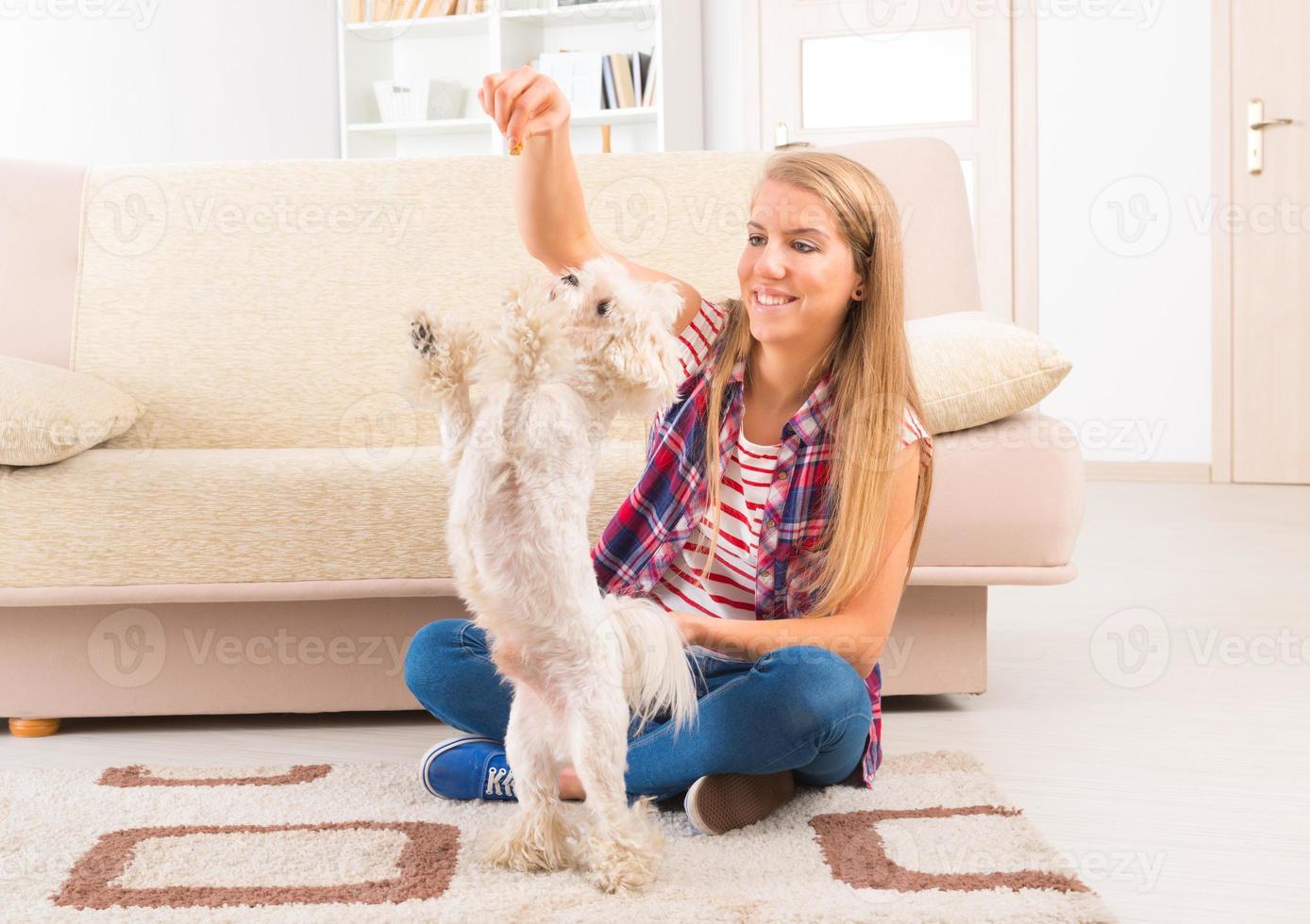 Beautiful young woman training her dog photo