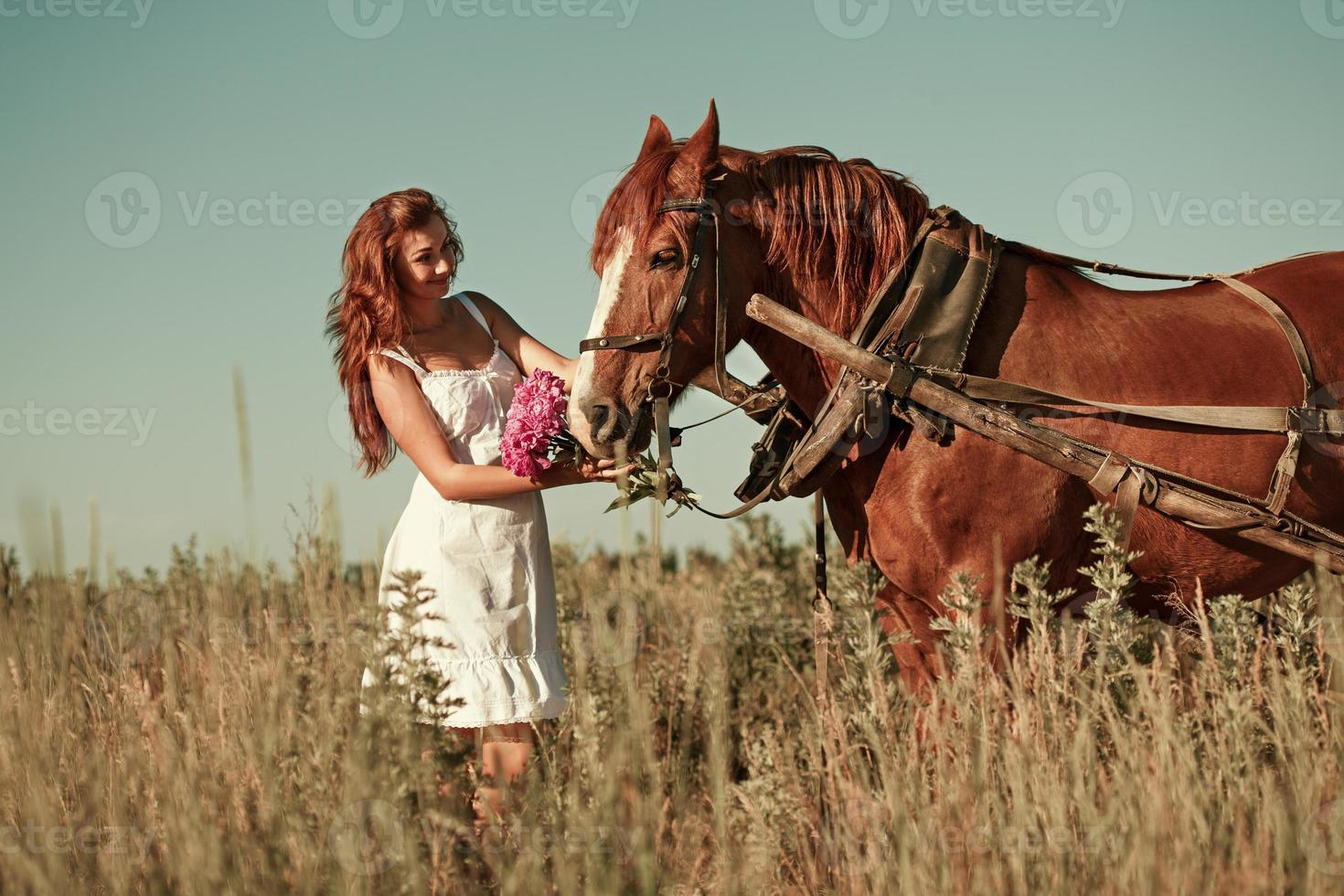 Woman and horse in summer day, outdoors. Series photo