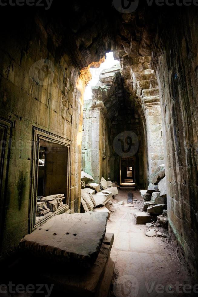 Ta Prohm temple Angkor Wat photo
