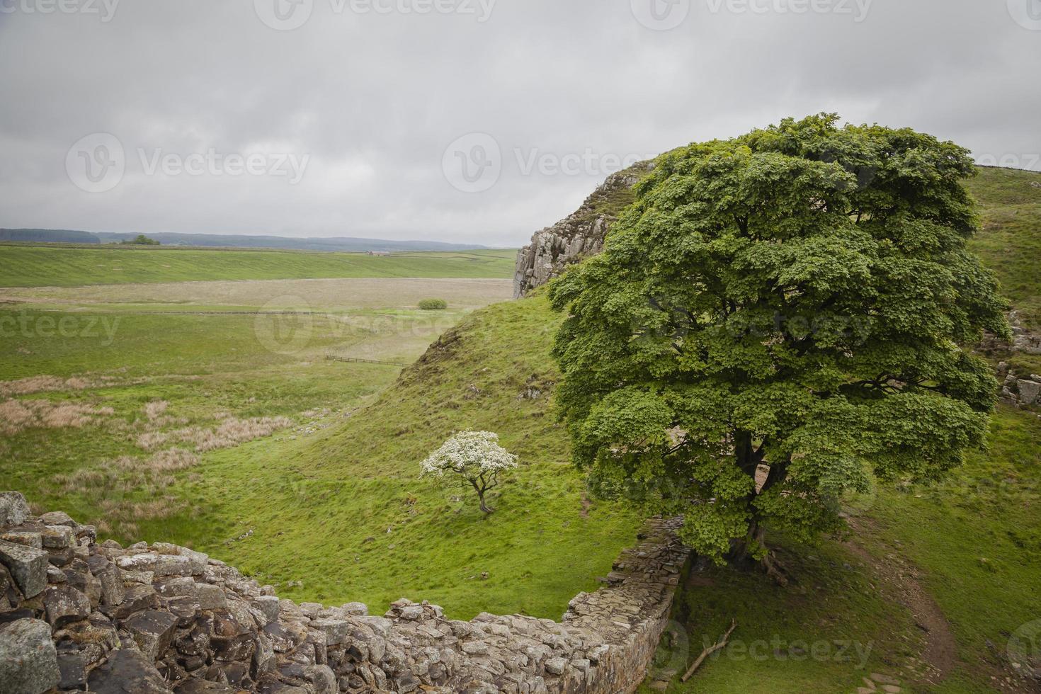 Hadrians Wall photo