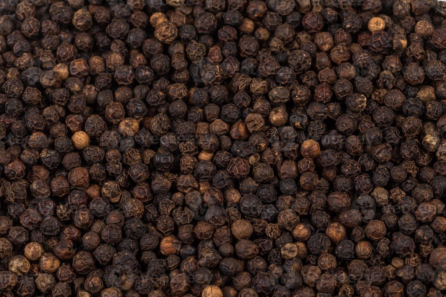 pimienta negra ampliada foto