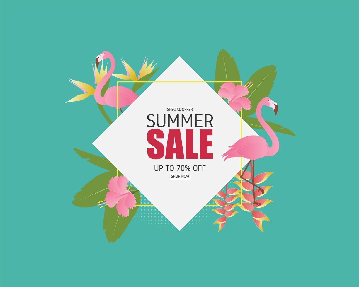 banner di vendita estiva con uccello fenicottero vettore