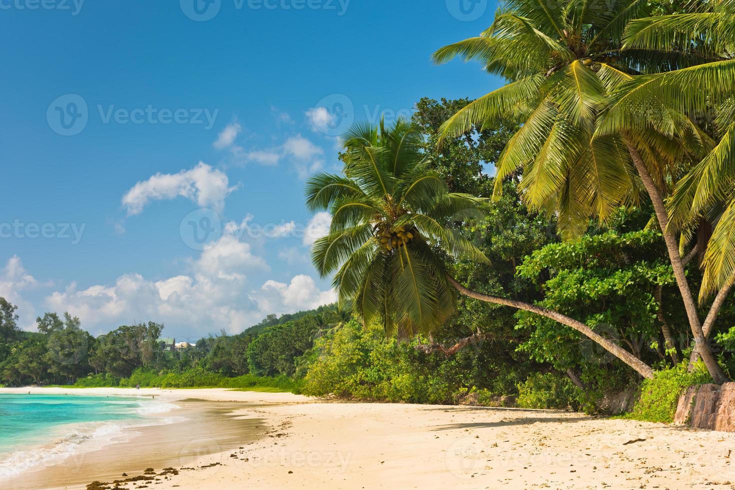 playa tropical en mahe island seychelles foto
