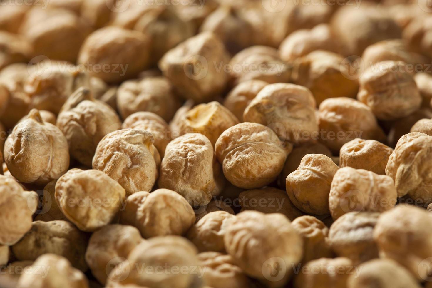 Raw Organic Garbanzo Beans photo
