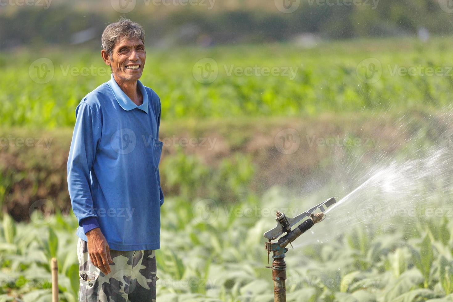 asian farmer watering plant photo
