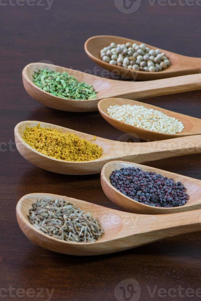 Spices in wooden spoons photo