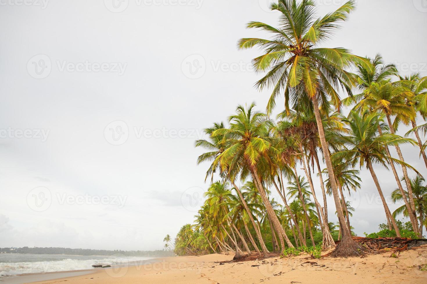 Rainy day on a tropical island photo