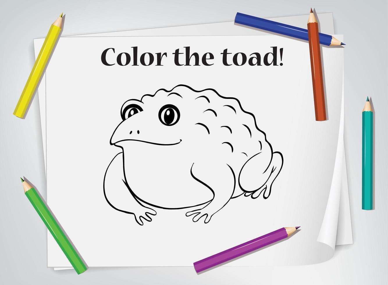 foglio da colorare per bambini rospo vettore