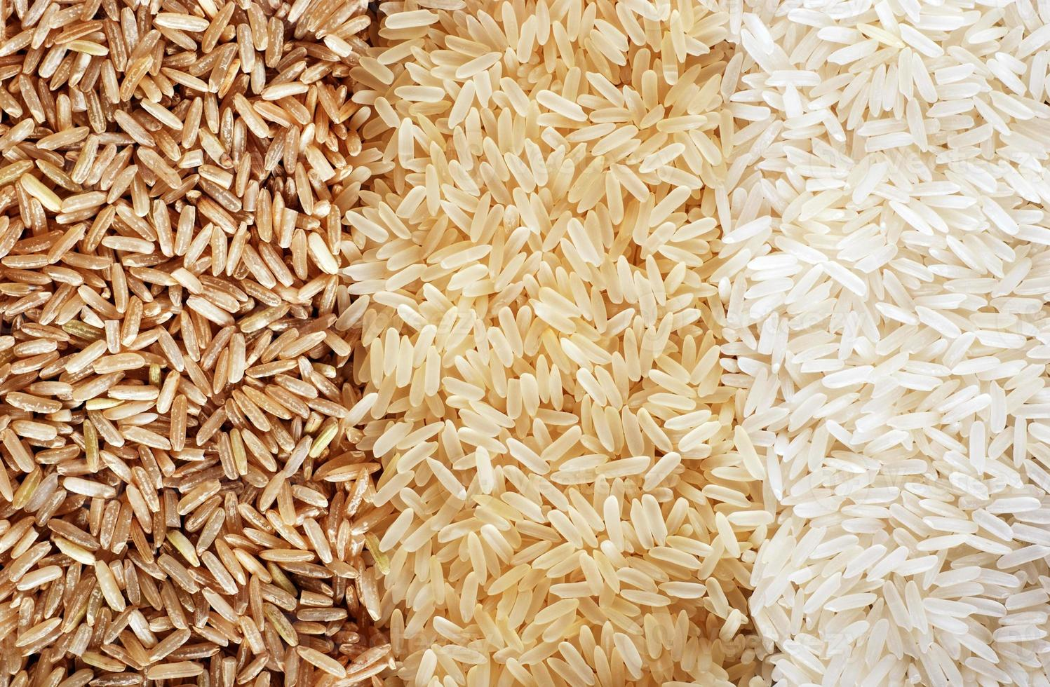 Three rows of rice varieties - brown, wild and white. photo
