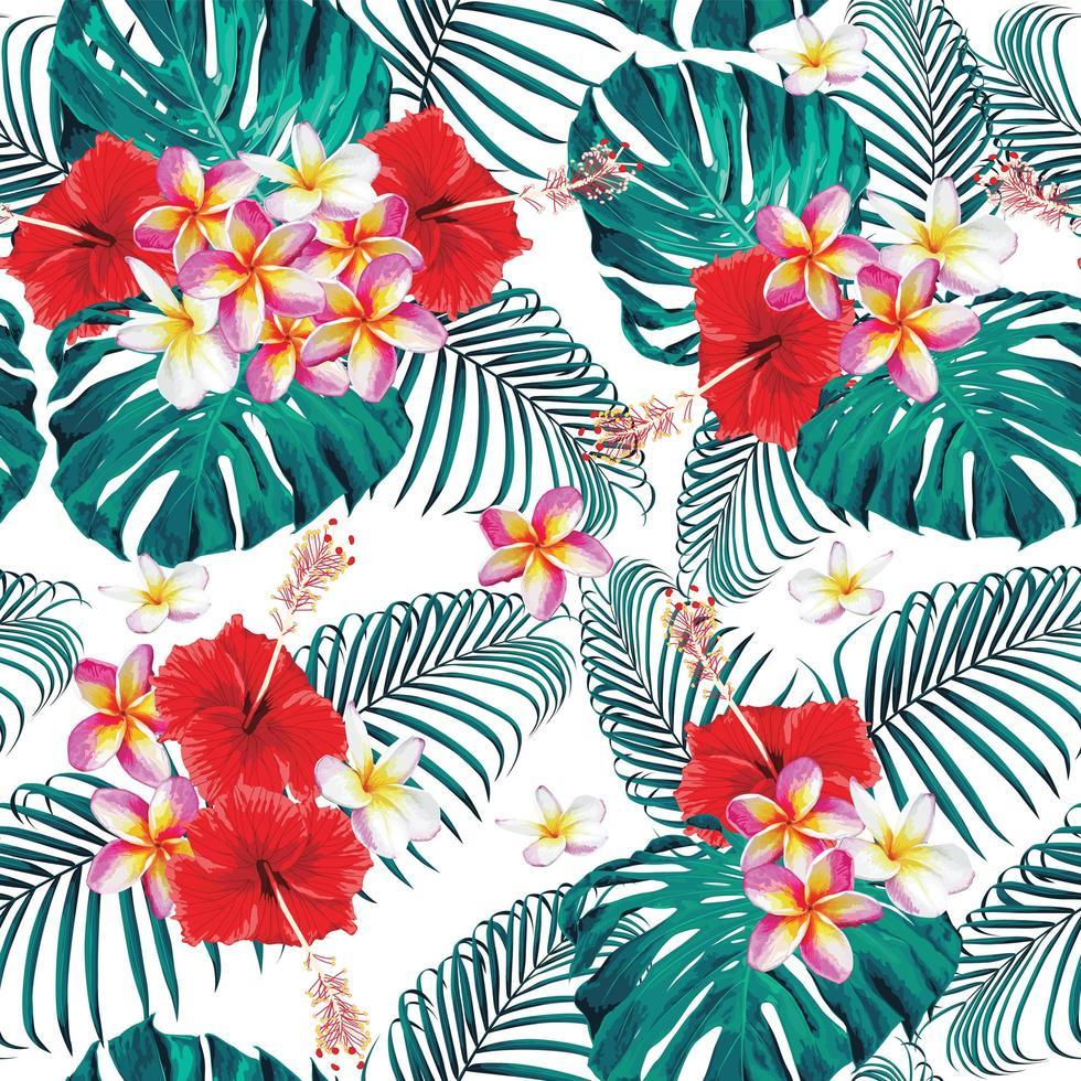 fiori pastello di frangipani e ibisco vettore