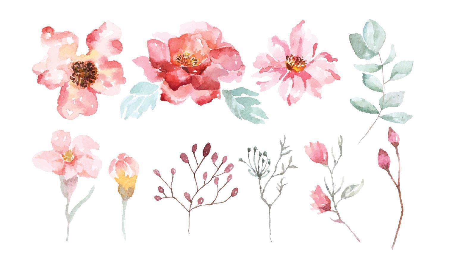 ensemble de fleurs et de branches de fleurs aquarelle vecteur