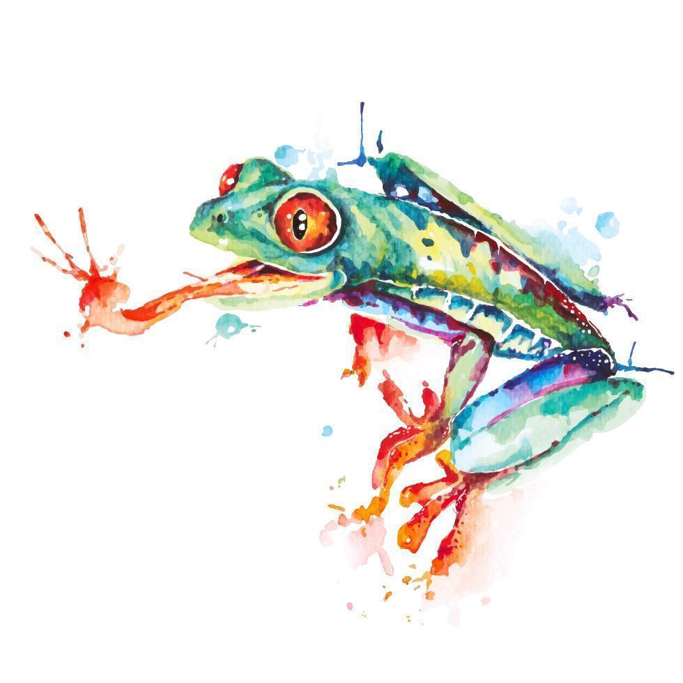 grüner Frosch Aquarellentwurf vektor