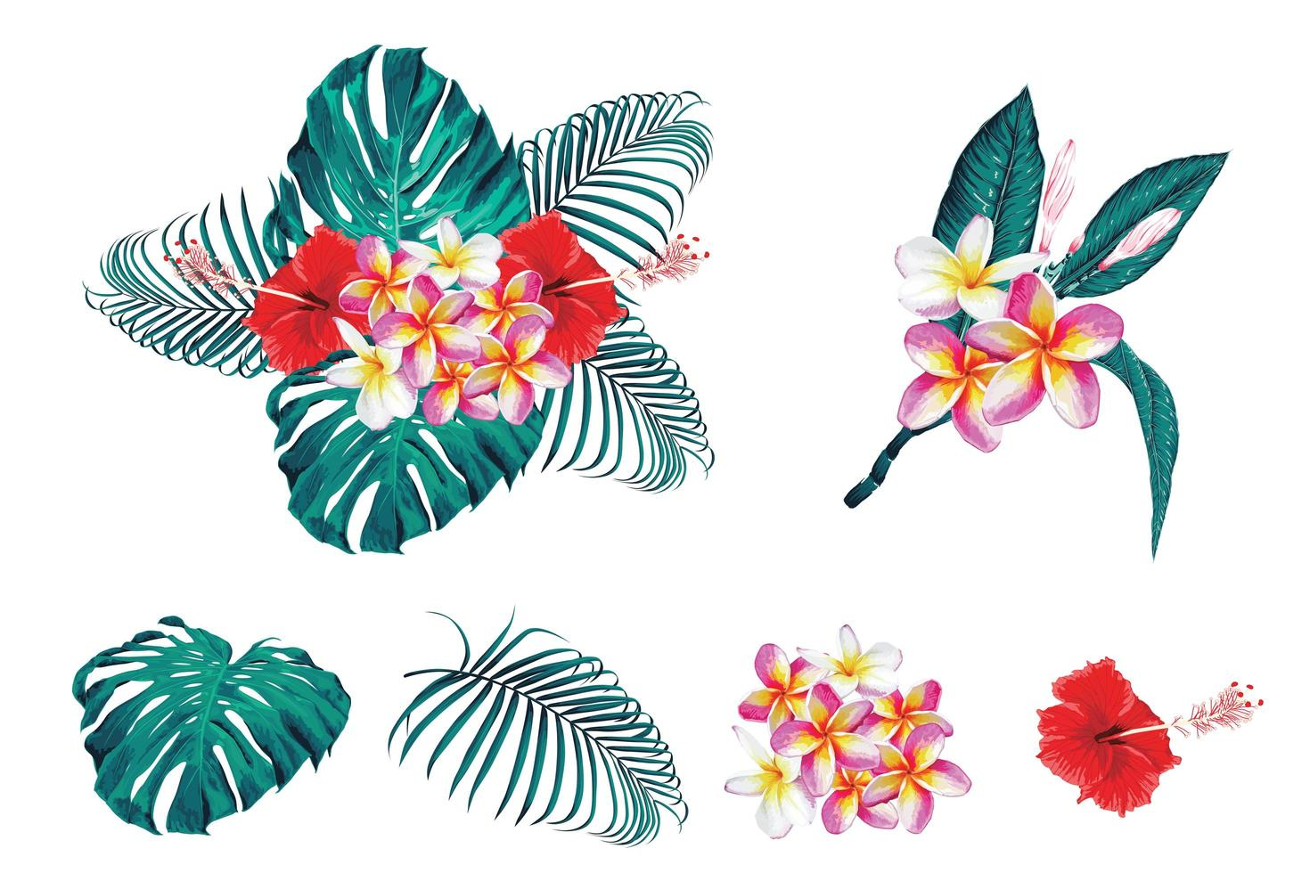 set di bouquet botanico tropicale vettore