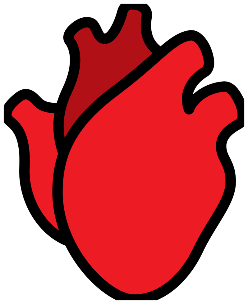 cuore umano png