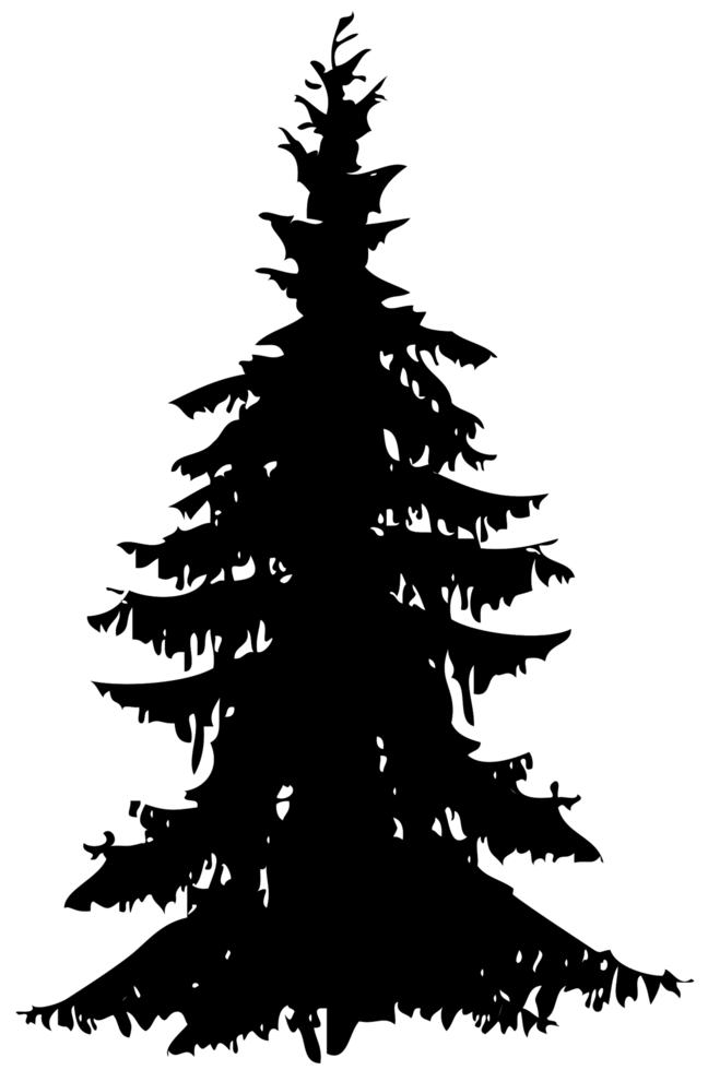Kiefer png