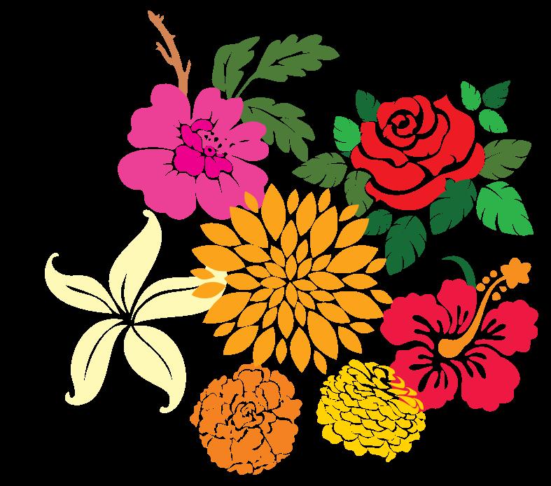 decorazione floreale png
