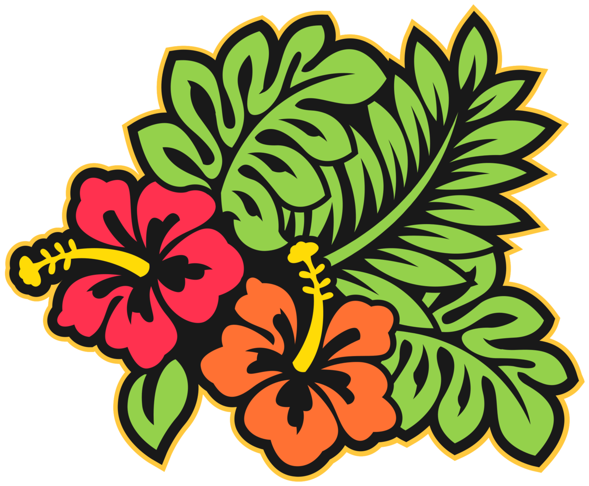 fiore delle Hawaii png