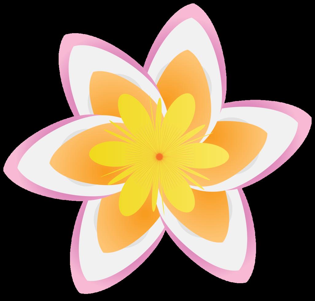 fleur polynésienne png