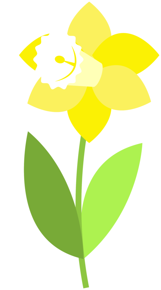 Blume png