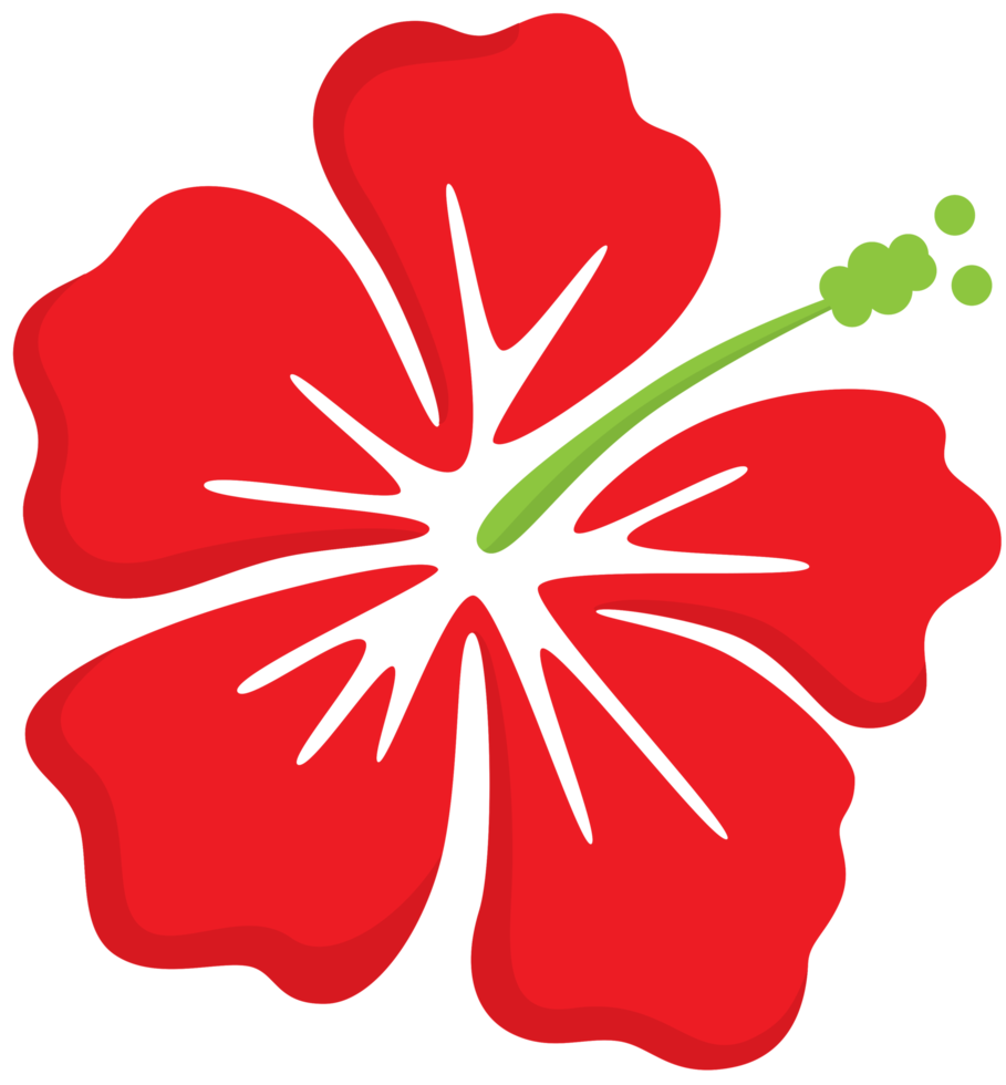 flor polinesia png