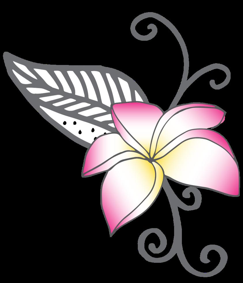 Blume polynesisch png
