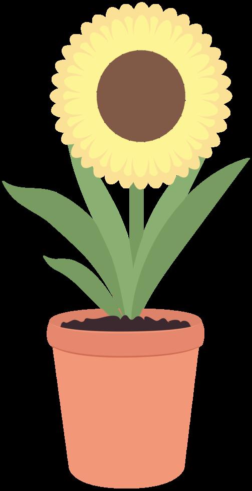 Flower pot png