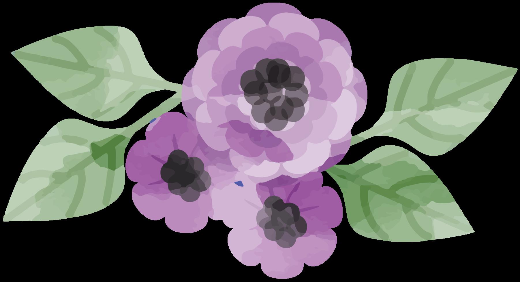 acuarela de flores png
