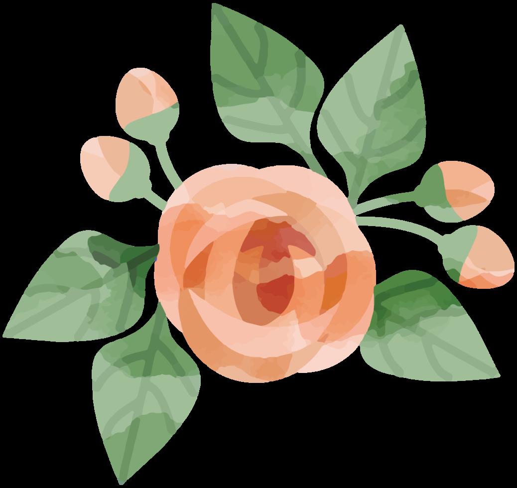 bloem aquarel png