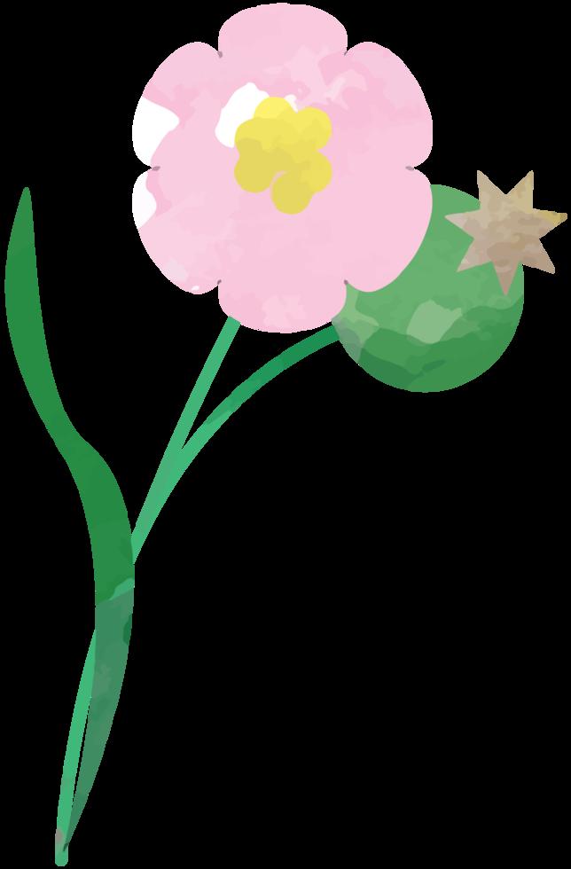 flor de color de agua png