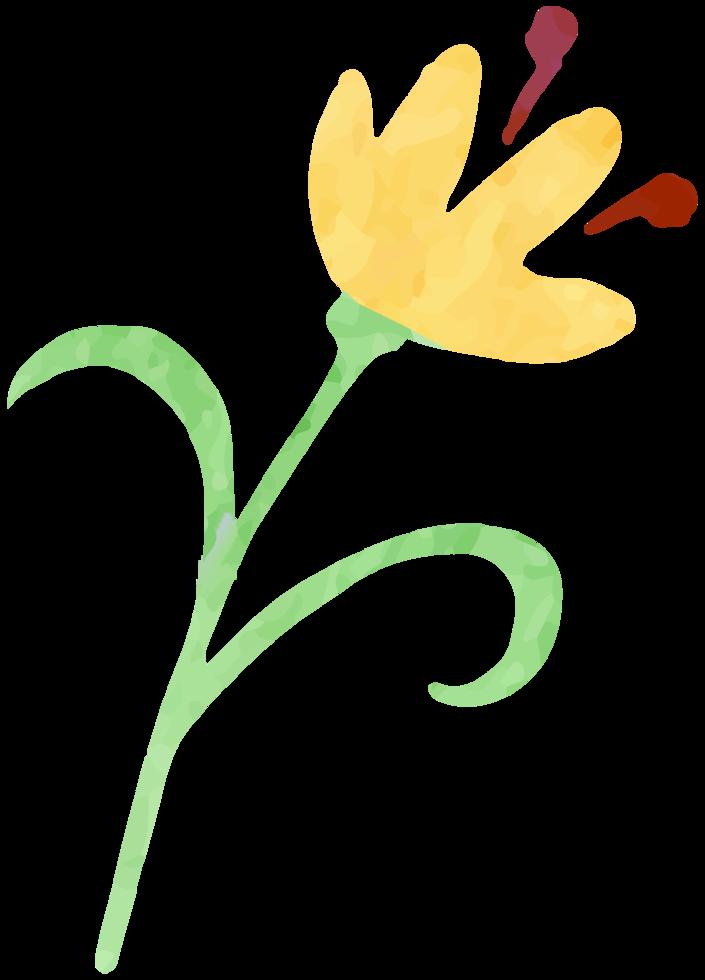 aquarelle fleur png