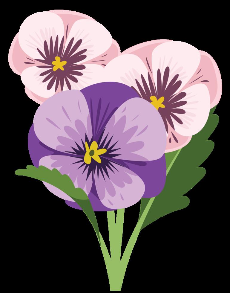 fiore viola del pensiero png