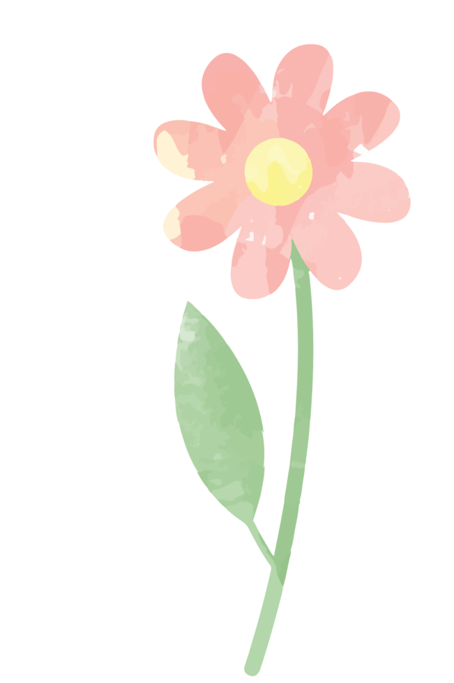 Flower watercolor png