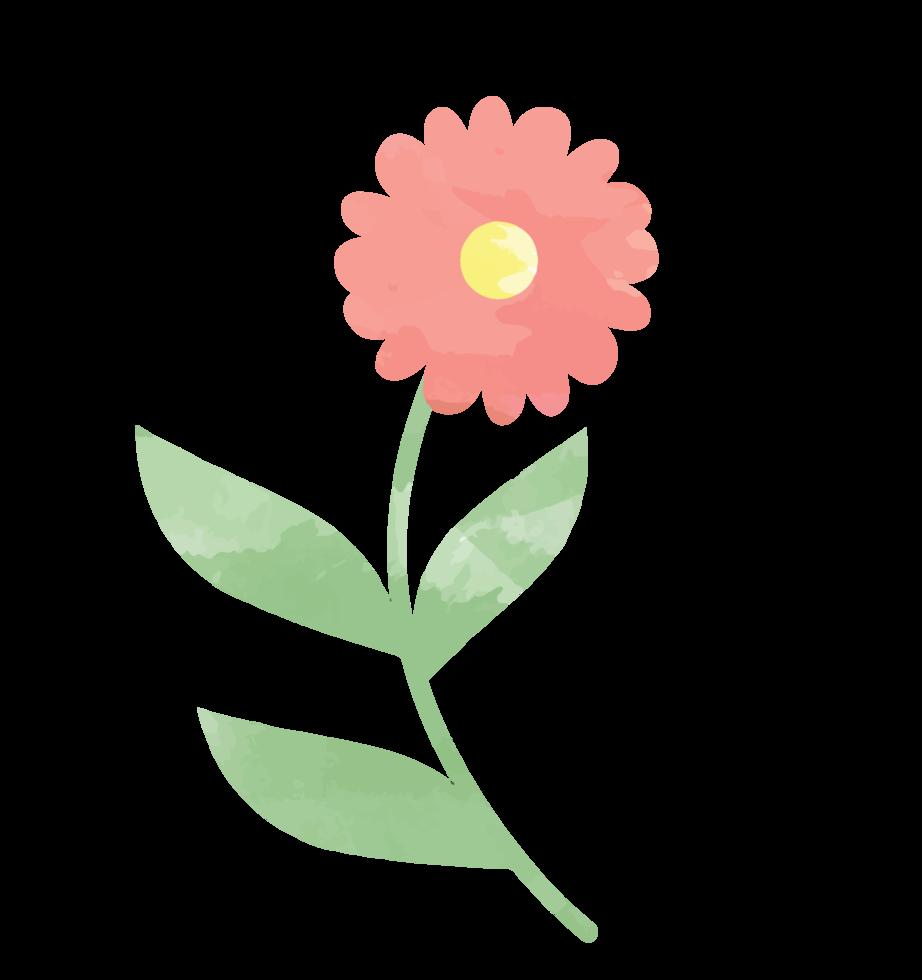 Flower watercolor png