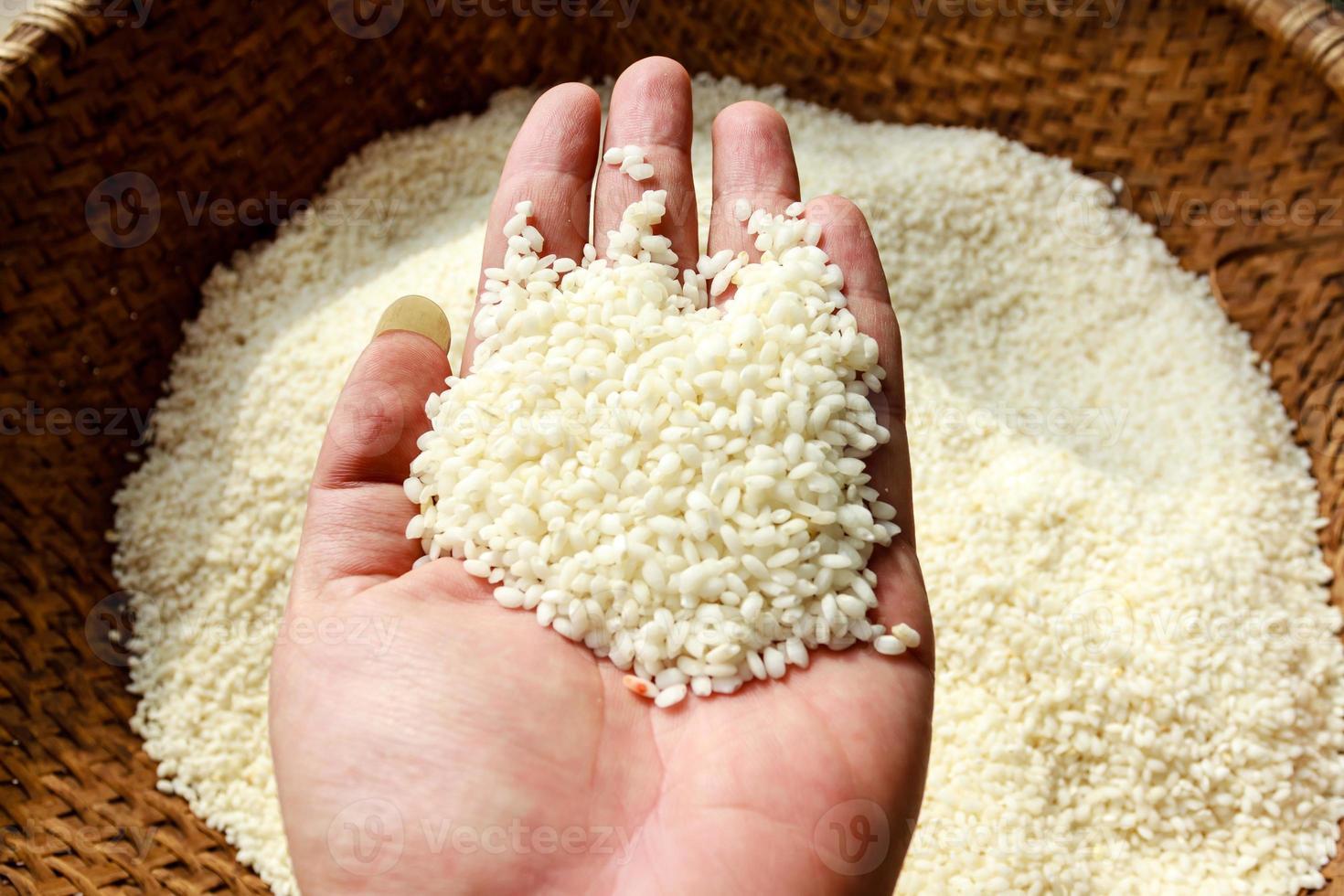 arroz branco foto