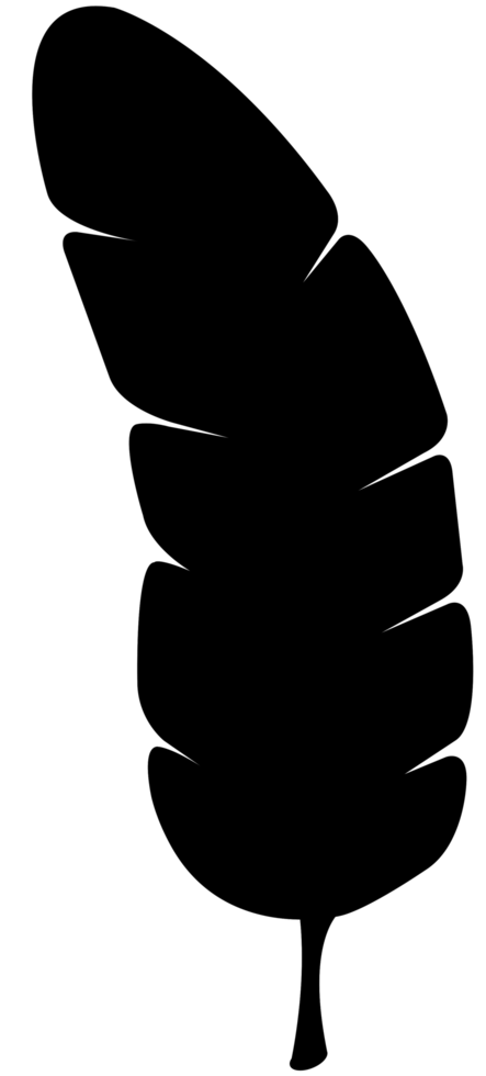 paume png