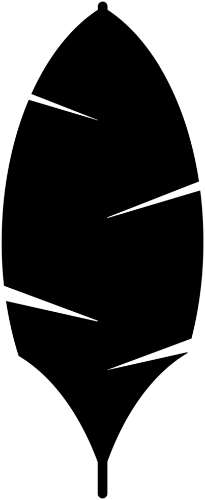 palm png
