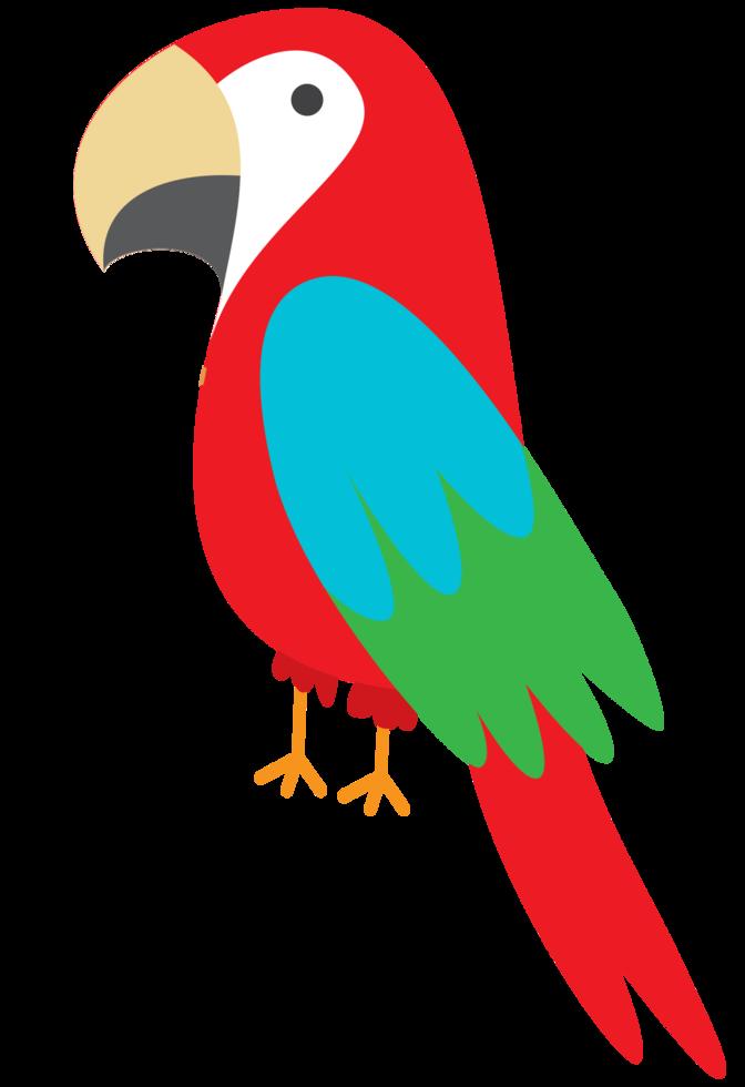 pappagallo png