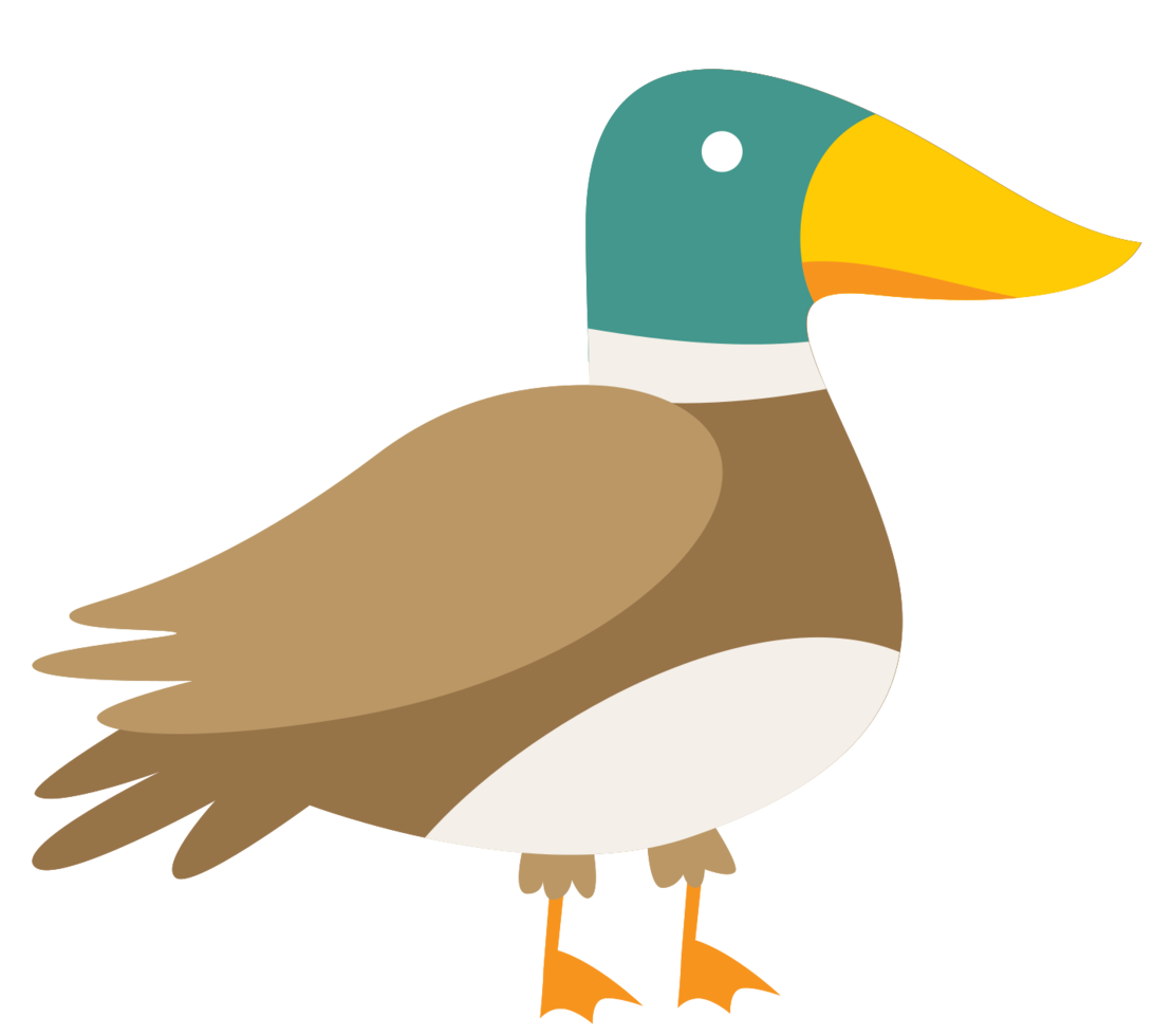 Pato png