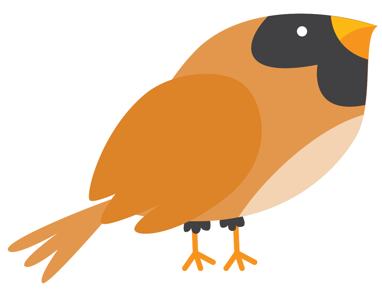 uccello png