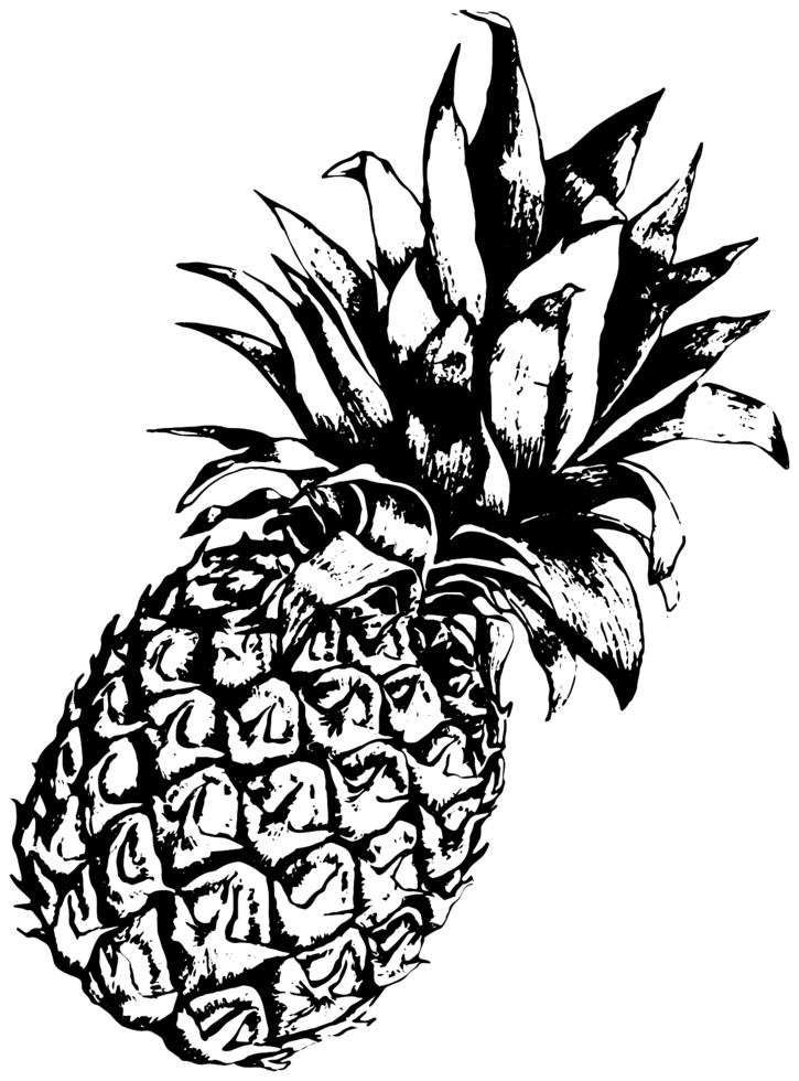 bosquejo de piña png
