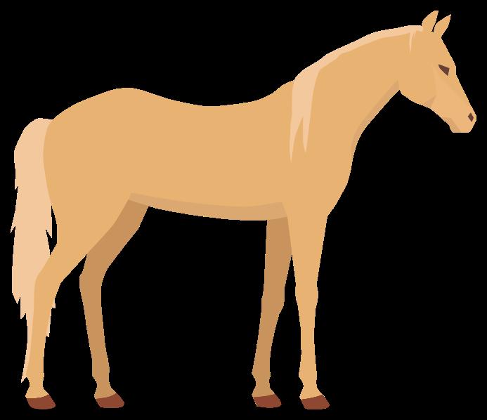 paard png