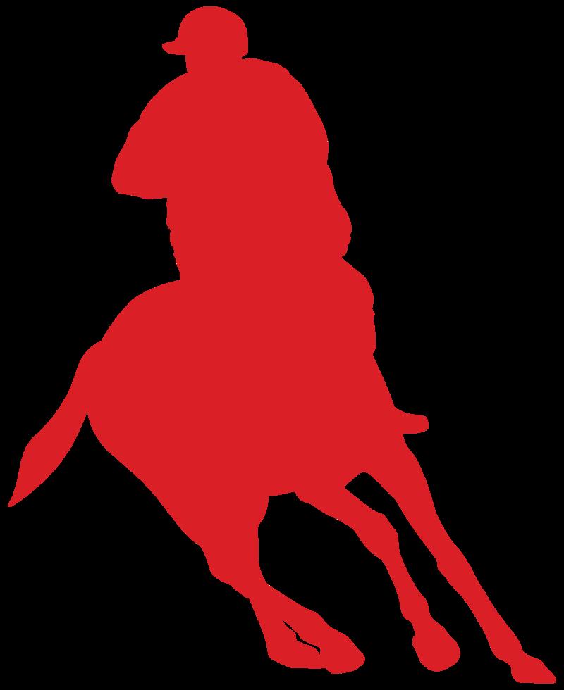 equitación png