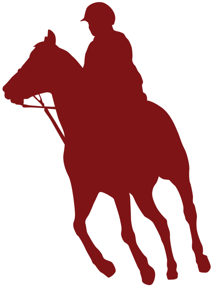 andar a cavalo png