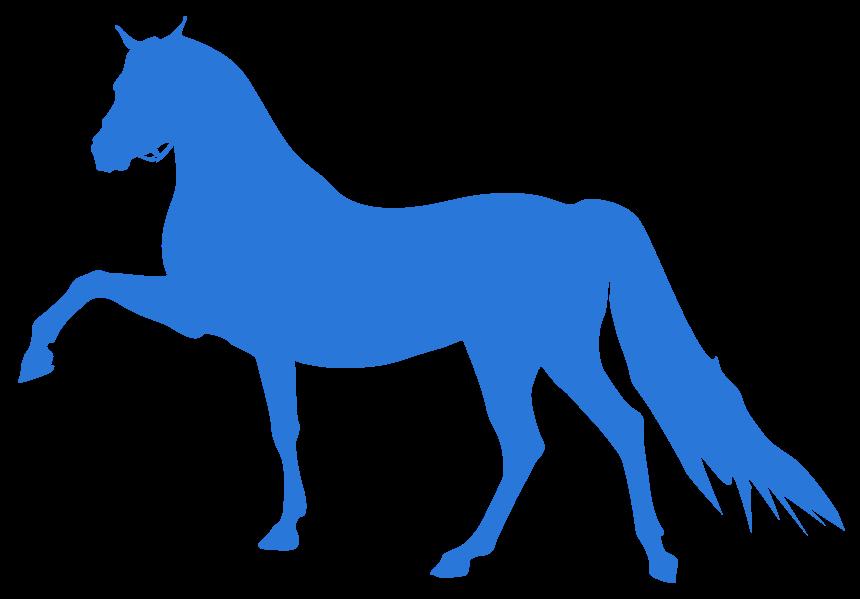 Pferd png