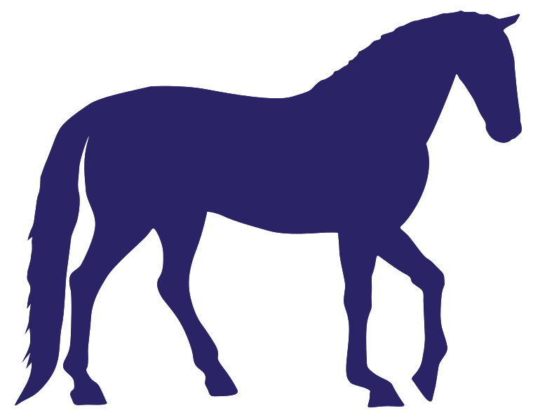 caballo png