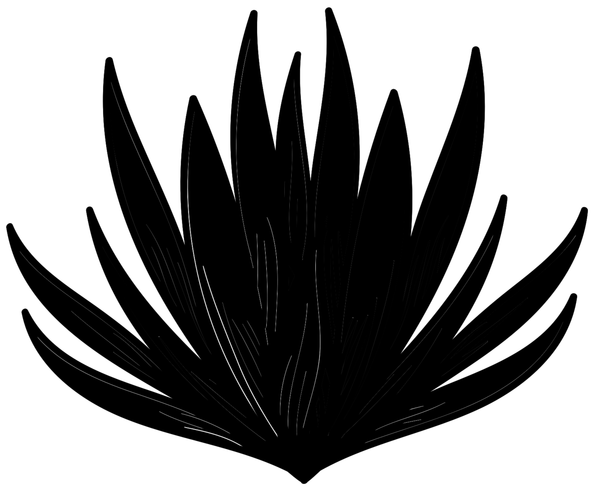 planta de aloe png